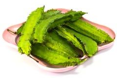 Fagioli alati verde  Fotografia Stock
