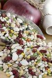 Fagioli & lenticchie in paletta fotografia stock libera da diritti
