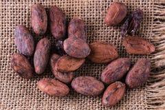 Fagioli crudi del cacao sopra il fondo della tela Fotografie Stock