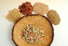 Fagioli dei legumi per fondo Fotografia Stock