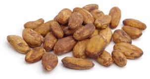 Fagioli del cacao. fotografie stock