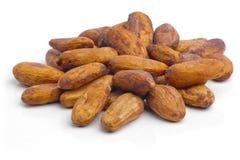 Fagioli del cacao. immagini stock