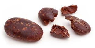 Fagioli del cacao. immagine stock