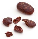 Fagioli del cacao. fotografia stock libera da diritti