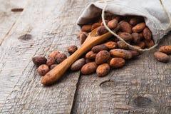 Fagioli del cacao Fotografia Stock Libera da Diritti