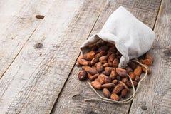 Fagioli del cacao Immagini Stock Libere da Diritti