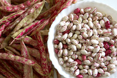 Fagioli del mirtillo rosso Fotografie Stock