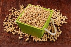 Fagioli della soia fotografia stock