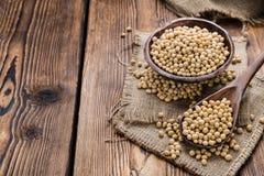 Fagioli della soia Immagini Stock Libere da Diritti