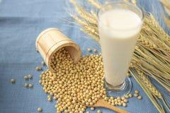Fagioli della soia, latte di soia nel pavimento blu del cucchiaio di vetro e di legno fotografie stock libere da diritti