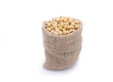 Fagioli della soia nella borsa dell'iuta Immagini Stock Libere da Diritti