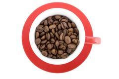 Fagioli della tazza di caffè Fotografia Stock Libera da Diritti