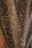 Fagioli di Coffe Fotografie Stock Libere da Diritti