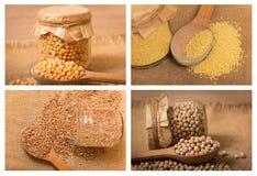 Fagioli e collage dei grani Immagine Stock