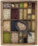 Fagioli e granuli in casella dell'annata con la paletta Immagine Stock Libera da Diritti