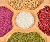 Fagioli e riso della miscela Immagine Stock