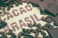 Fagioli e tela di iuta del cacao immagine stock