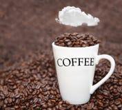 Fagioli freschi della tazza di caffè Fotografie Stock Libere da Diritti