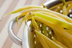 Fagioli gialli in colander fotografie stock libere da diritti