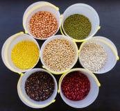 Fagioli misti e lenticchie dei legumi differenti Immagine Stock Libera da Diritti