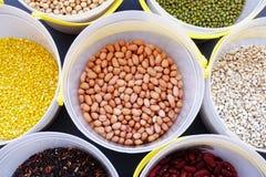 Fagioli misti e lenticchie dei legumi differenti Immagini Stock