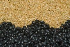 Fagioli neri e riso sbramato Fotografie Stock Libere da Diritti