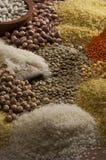 Fagioli, pulcino, alimento Fotografia Stock Libera da Diritti