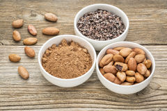 Fagioli, punti e polvere del cacao Immagine Stock Libera da Diritti
