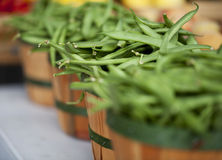 Fagioli verdi in cestini al servizio dei coltivatori Immagine Stock Libera da Diritti