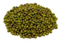 Fagioli verdi secchi in un mucchio Fotografie Stock