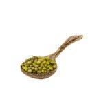 Fagioli verdi sopra il cucchiaio di legno isolato su bianco Fotografia Stock