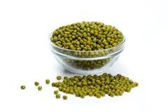 Fagioli verdi in tazza di vetro Fotografia Stock Libera da Diritti