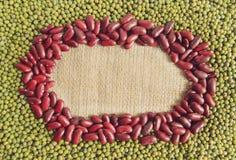 Fagiolini con i fagioli rossi Fotografia Stock Libera da Diritti