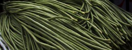 Fagiolo di Yardlong, bora, bodi, fagiolo dall'occhio a lungo loricato, fagiolo nano, del fagiolo asparago, fagiolo del serpente,  Fotografia Stock