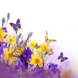 Fahne der Blumen-Background Stockbilder
