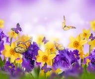 Fahne der Blumen-Background Stockfotos
