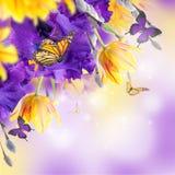 Fahne der Blumen-Background Lizenzfreie Stockbilder