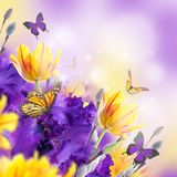 Fahne der Blumen-Background Lizenzfreies Stockbild