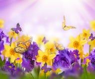 Fahne der Blumen-Background Stockfoto