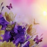 Fahne der Blumen-Background Lizenzfreie Stockfotografie