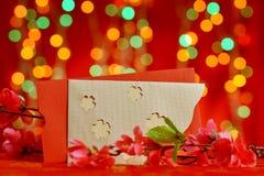 Fahne des Chinesischen Neujahrsfests Lizenzfreies Stockfoto