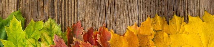 Fahne von Autumn Time Background, irgendein Fall verlässt auf verwittertem Holz mit Kopienraum für Ihren Text stockbild