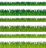 Fahnen des grünen Grases Stockbild
