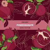 Fahnen mit Granatapfelfrüchten auf Burgunder-Hintergrund stock abbildung