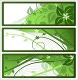 Fahnen oder Kennsätze mit Blumenauslegung, Vektor stock abbildung