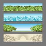 Fahnenanzeigen-Palme-Themavektorillustration Stockfoto