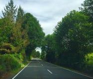 Fahrbahn in Neuseeland Lizenzfreies Stockbild