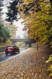 Fahren in Acadia-Nationalpark Lizenzfreie Stockbilder
