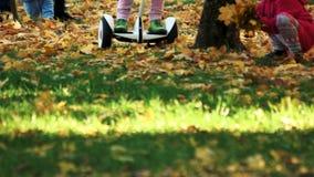 Fahren auf das Gras bedeckt mit gefallenen Blättern stock video
