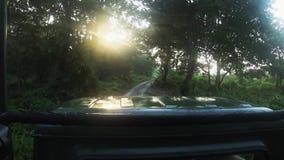 Fahren auf Jeep bei Safari Tour im Nationalpark-Wald Chitwan stock video
